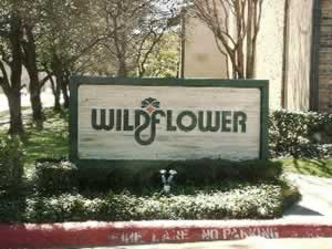 Wildflower In Dallas Tx View Photos Floorplans Amp Pricing